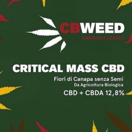 Cannabis Light Cbweed Critical Mass CBD – 2g