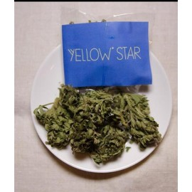 Yellow Star 2.5gr.