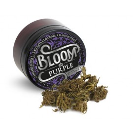 Bloom Purple 3 gr